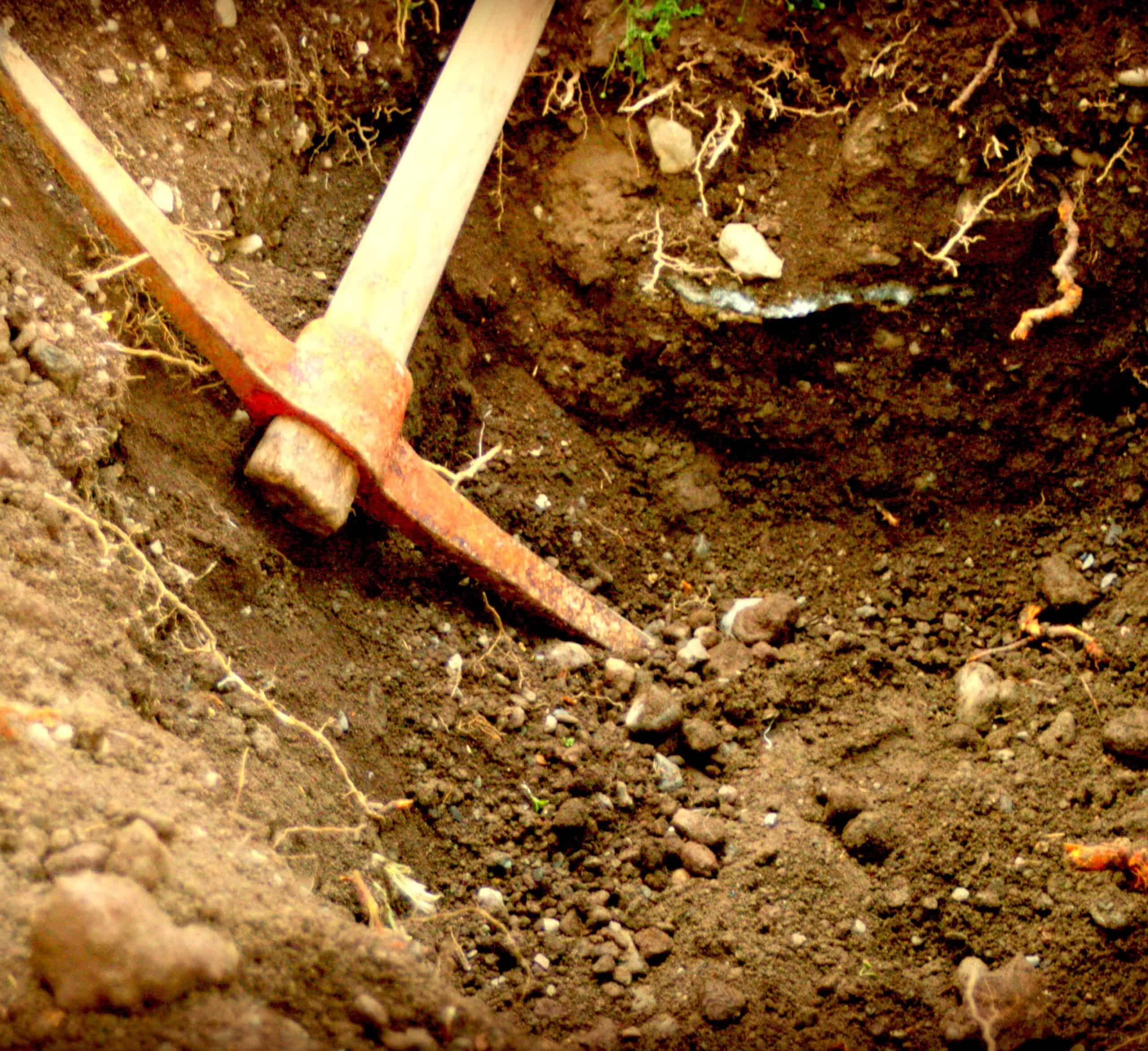 Un terreno da scavare